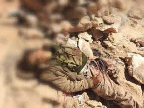 مسؤول حكومي يحذر من سقوط محافظتي مأرب والجوف بيد مليشيا الحوثي