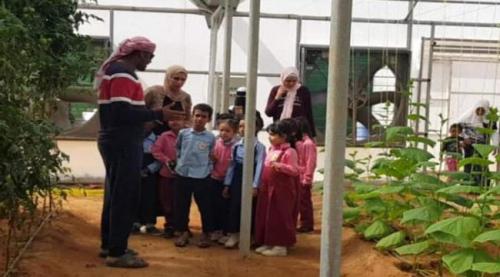 خليفة الإنسانية تطلق مبادرة لتشجير مدارس سقطرى