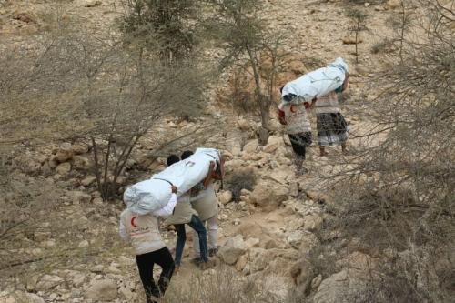 بدعم إماراتي.. هيئة الهلال الأحمر تواصل توزيع الخيام الأيوائية  على البدو الرحل في مديرية ارياف المكلا بحضرموت