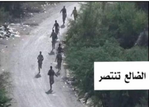 شاهد بالصورة.. فرار جماعي لمليشيات الحوثي من جبهة الفاخر بالضالع