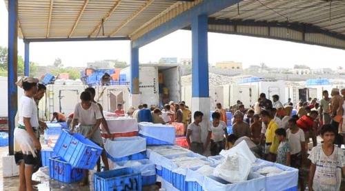 «الهلال الأحمر» الإماراتي تبني 24 مركزاً للإنزال السمكي في اليمن