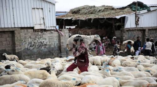 وكالة دولية.. عيد صعب في اليمن مع ارتفاع الأسعار وتدهور قيمة الريال