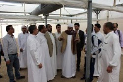 20 الف حاج يمني في مكة المكرمة