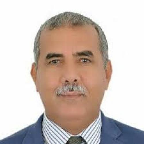 السياسي غالب: استشهاد أبو اليمامة كان ميلاد تاريخ جديد للجنوب
