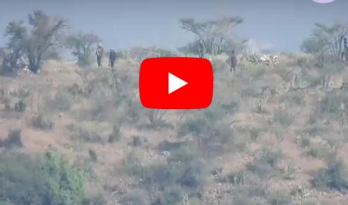 بالفيديو.. شاهد اقتحام القوات الجنوبية بالضالع لمواقع المليشيات الحوثية خلال تحرير منطقة حجر