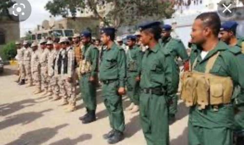 شرطة البساتين تلقي القبض على مجموعة مسلحة تقوم بابتزاز المواطنين