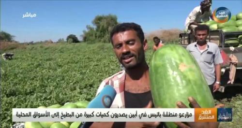 مزارعو البطيخ في خنفر يحققون أرباحا مالية هذا العام