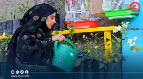 رندا عكبور.. إعلامية يمنية تتحول لبيع الورود