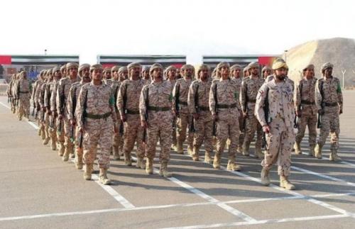 الإمارات قوة أمن واستقرار وتنمية في اليمن